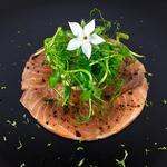 Salmon carpaccio, with raspberry mayo and pea shoots.