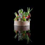 Image chef Stouvenel -