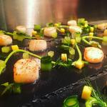 Scallops, Wasabi Cucumber, Pea + Mint Puree and Mango