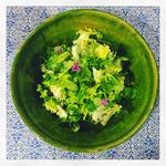 Misticanza, a salad of foraged local herbs and salads, honey vinaigrette