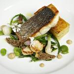 Wild bass, morels, onions, pressed potato