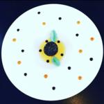 Image chef Houx