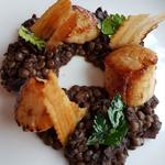 Scallops with puy lentils