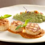 Pan seared Scallops on smoked tomato sauce, Pea and Basil Risotto, crumbled Tomato