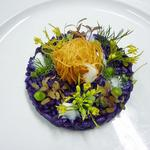 Image chef OULEVEY