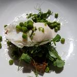 Poached egg with peas and breaded black pudding