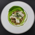 Turbo, risotto de petit épeautre, artichaut, salicorne, coulis de cresson, émulsion citron thym.
