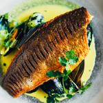 Seared wild sea bass, curried leeks, mussels