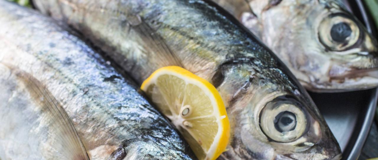 Mer Et Herbacé