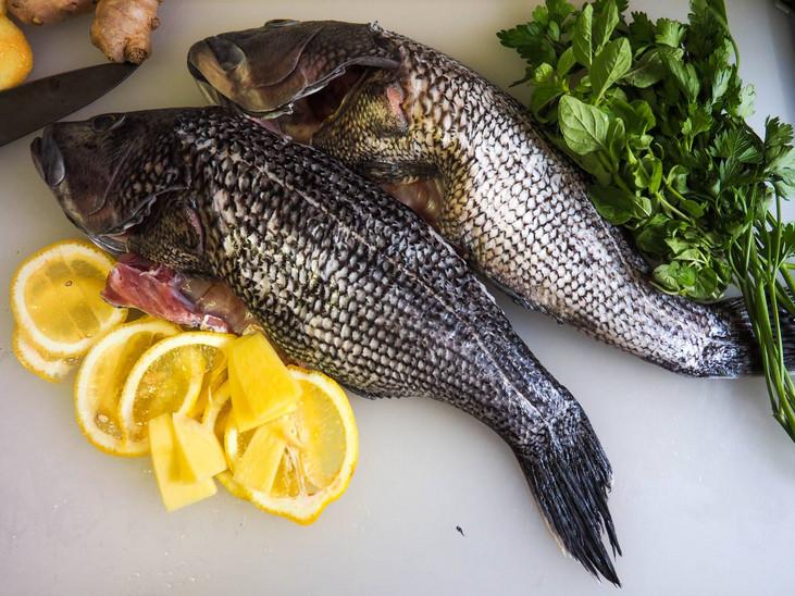 Sussex Catch
