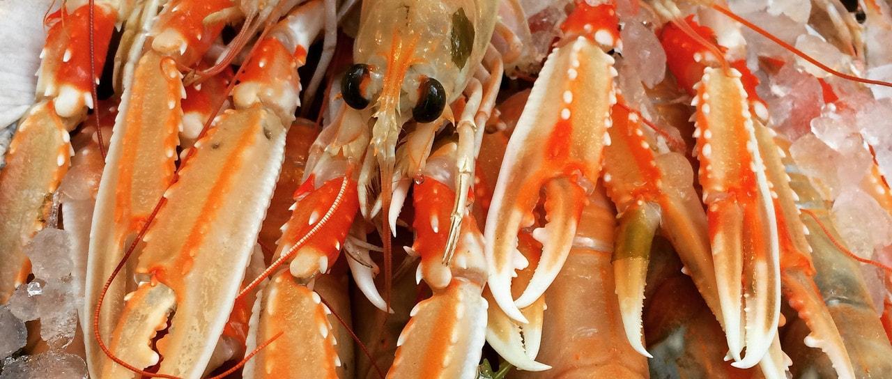 Lobster Burger!!!!